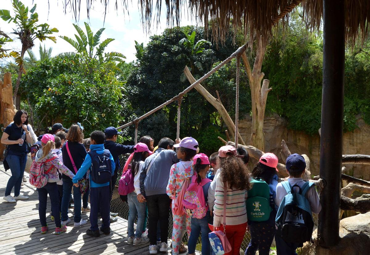BIOPARC Fuengirola, apuesta de futuro por la educación para la Conservación