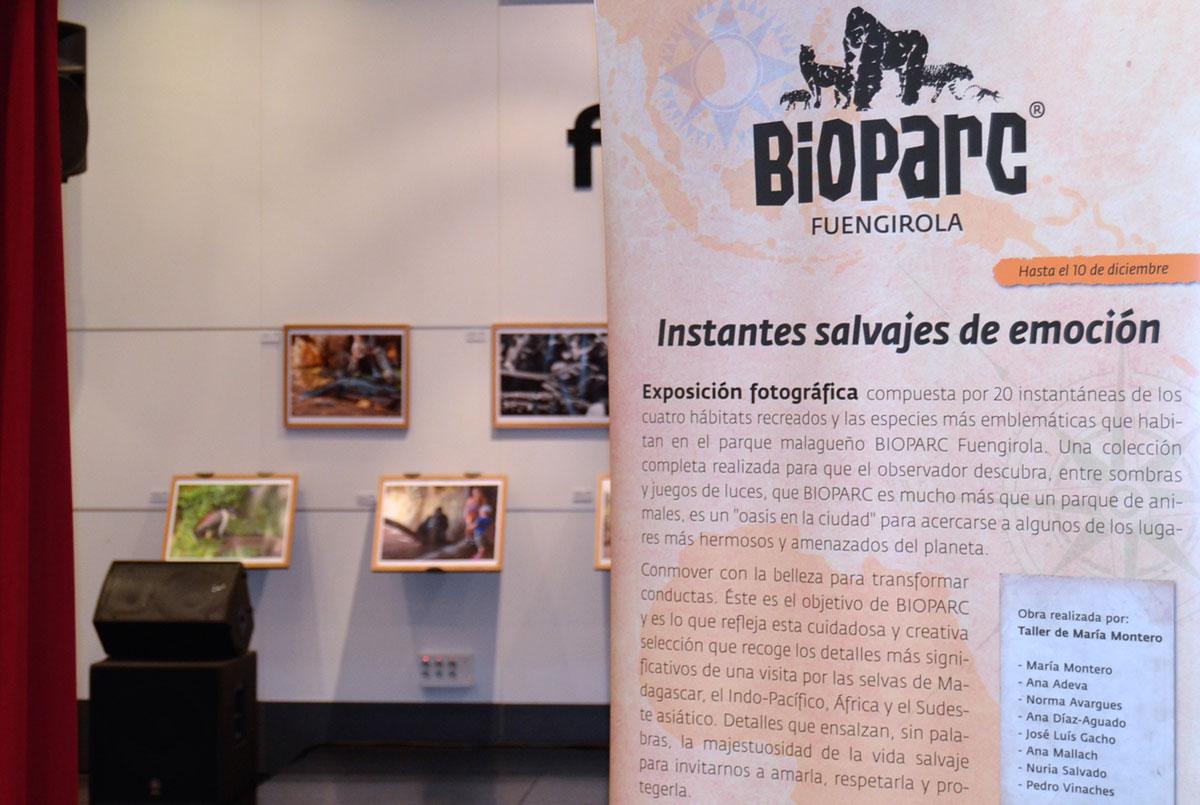 """Inauguración de la exposición """"Instantes salvajes de Emoción"""" de BIOPARC en Fnac Málaga y Fnac Marbella"""