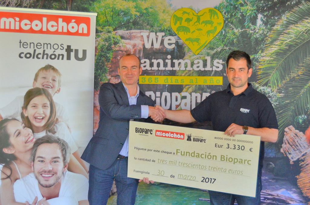 La empresa malagueña Micolchón dona 3.330 euros a la Fundación Bioparc para la conservación del Orangután de Borneo